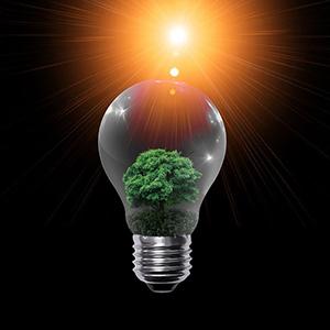 Planète Oui, un fournisseur d'électricité 100% verte